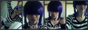 noodle id by Havocluver