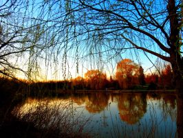Pond at Sunfall by Michies-Photographyy