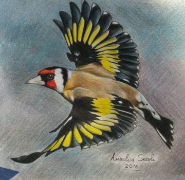 Goldfinches flying by Ceril91