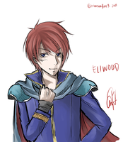 Eliwood is Cool by crimsonfire3