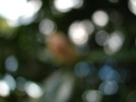 Bokeh 09. by stock-basicality