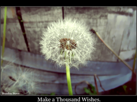 Make a Thousand Wishes. by Xibris