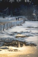 White Times ~ Evening Walk by OlivierAccart