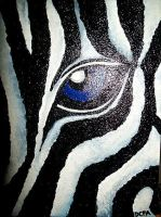 eye of zebra by DCPA5