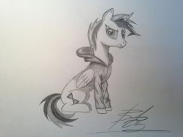 OC request for mlp forums member KitsuneSoul108 by Sketchy1987