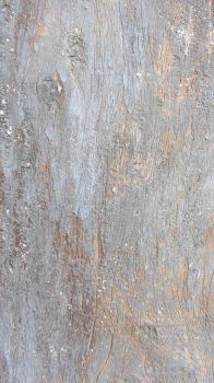 Old Painted Wood Texture Sample by altback