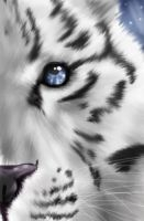 Tiger Eyes -fluffy- by thecrab