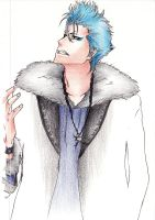 Grimmjow in Color by yuraland