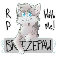 Rp with Breezepaw! (+Plots) by screms