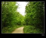 chemin by melisweet