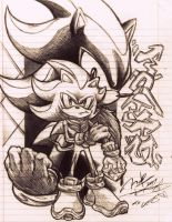 Shadow the Hedgehog by ZionPhnx