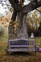 Cemetery Bench by midnightstouchSTOCK