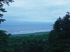 Cape Disappointment by Synaptica