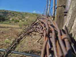 Rusty Barbed Wire by IcejCat
