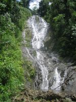 Waterfall Within the Jungle by camias