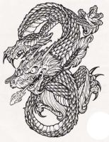 chinese  dragon by sidewinder72
