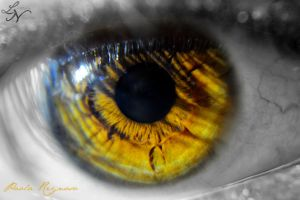 Eye Project: Impaled (re-shoot) by ShineeDragon