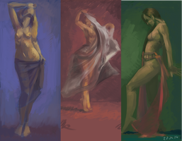 Quick value/color study by zygi89