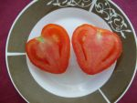 Heart shaped tomato by Lola22