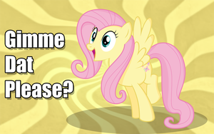 Fluttershy - Gimme Dat Please by hopeabandoner