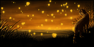 Make a Wish -Portfolio Submission- by Nicay