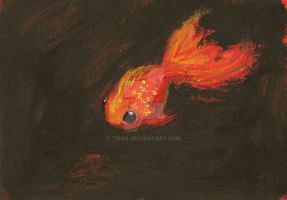 Poisson Rouge by tissa