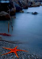 Starfish Blazing by mariaper