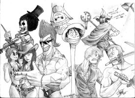 Mugiwara Crew by tomastocornal