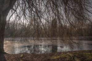 Willow Over Water by johnwaymont