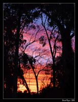 Sunset Silhouette 02 by DarthIndy