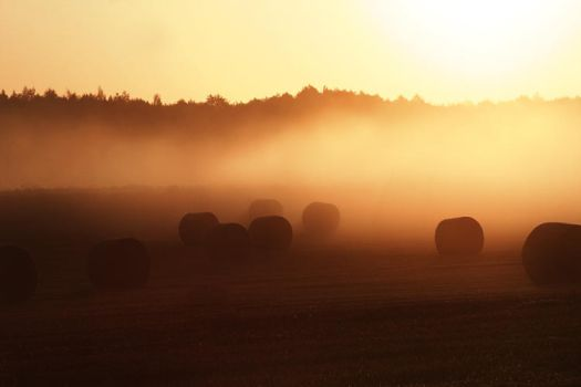 Countryside Mourning Fog -OLD- by Deavent
