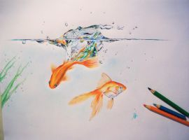 Goldfishes. by Roccia95