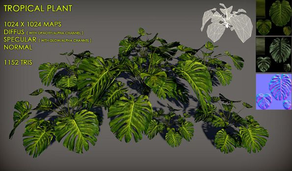 Free Tropical plant Pack by Nobiax