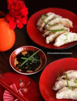 Homemade Pot Stickers II by theresahelmer