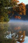 Early Autumn Reflections by tidesend