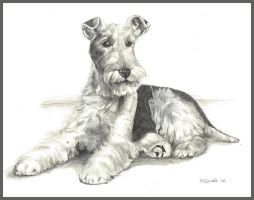 Fox Terrier by d3javu3