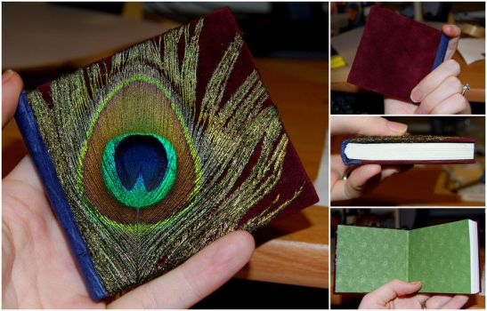 Peacock Book by funkmaster-c