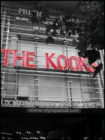 the kooks by magnifik