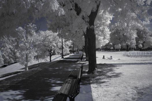 federal hill, infrared by eatthefrog