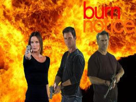 Burn Notice wallpaper by SWFan1977