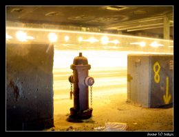Hydrant by braiker