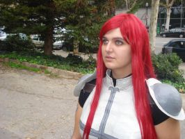 Erza Scarlet~~ by claudia1542