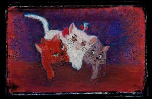 Cats by fmr0