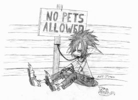 No Pets Allowed by Faullyn