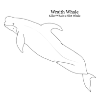 Male Wraith Whale Line Art by WeisseEdelweiss