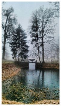 The pond by signum2