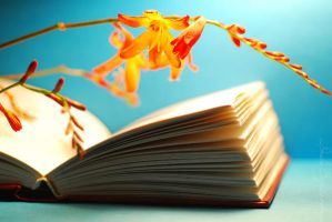 The book and crocosmia. by TheRedGirl
