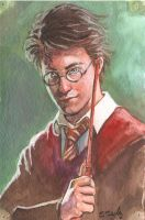 Harry Potter Watercolor Sketch by ssava