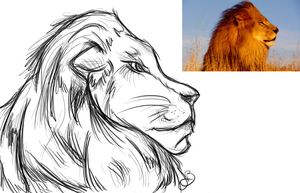 Lion Practice by ScarletHost