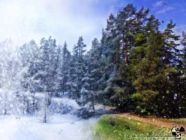 Winter - Summer change,,, by blackdragonssoul